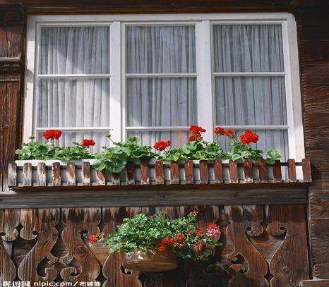 等到了冬日里,我们的窗户再将夏日里储存的能量释放出来,给予人们贴心
