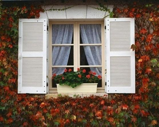 窗纱的新视界