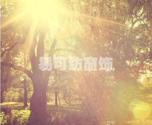 感受阳光的力量