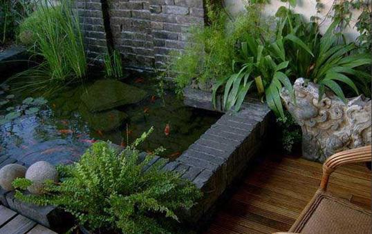 阳台,花木的栖息地
