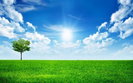 背景 壁纸 草原 风景 天空 桌面 460_288